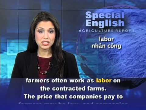 Anh ngữ đặc biệt 527 agriculture (VOA)