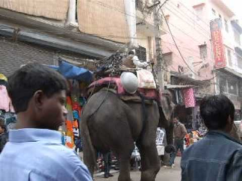 2007.01 Delhi