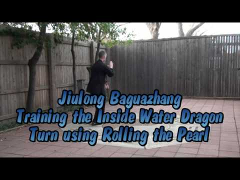 Baguazhang Jiulong:  Applications and Training: Water Dragon Turns Image 1