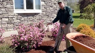 The Definitive How to Mulch Video