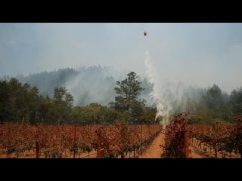 California wineries helping each other after wildfires