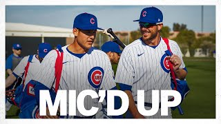 Anthony Rizzo + Kris Bryant Mic'd Up at Cubs-Angels Spring Training game! | Game Highlights