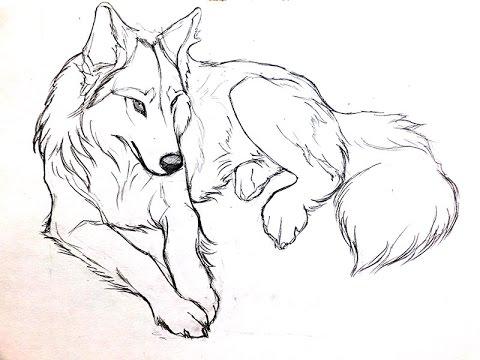 Видео как нарисовать волка карандашом поэтапно