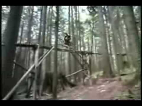 bmx,downhill,freeride,trial