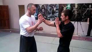 Wing Chun drill-SiFu Jelovac-Los Angeles 2016