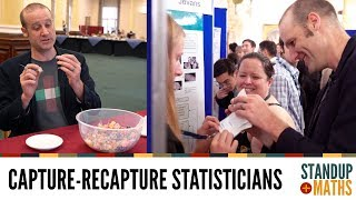 How to estimate a population using statisticians