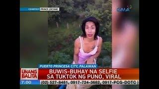 UB: Buwis-buhay na selfie sa tuktok ng puno, viral