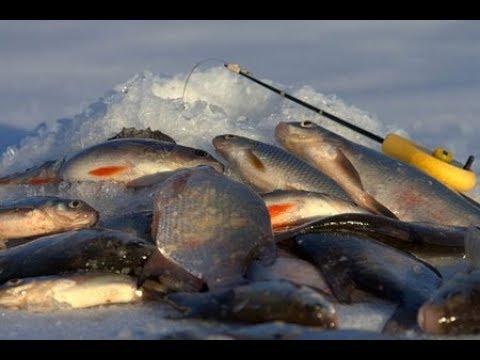 Зимняя рыбалка на Минском море 06.03.2018