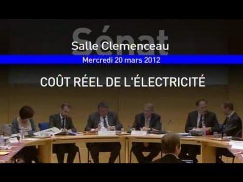 """Jean-Marc Jancovici """"Commission d'enquête sur le coût réel de l'électricité"""" Sénat [CC] [SD]"""
