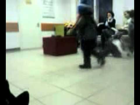 Маленький жиреновский бегает и дерется!!!(внебрач)