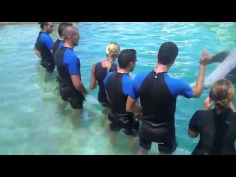 Jugadores del FC Barcelona nadaron con delfines en Miami