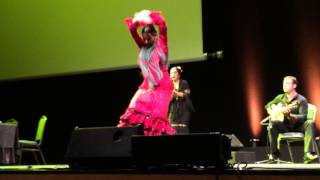 Фламенко, часть 2 / Flamenco show, part 2, ECCOMAS 2014