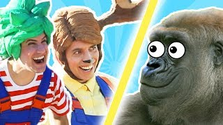 Trick and Flick | The GORILLA Strikes BACK!