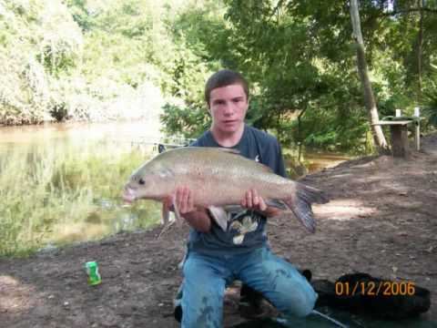 My 2007 Smallmouth Buffalo catches