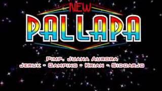 download lagu New Palapa - Suket Teki gratis