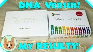 Results Comparison - AncestryDNA vs 23andMe - Genetic DNA Tests