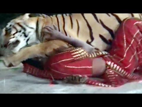 10 Unbelievable Animals That Saved Other Animals