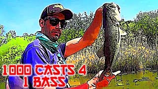 1000 Casts 4 One Bass