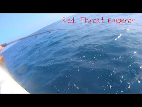 Fishing FNQ, Red Throat Emperor - East Coast Series