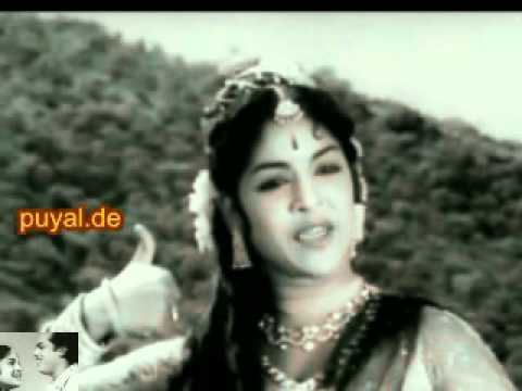 Roja malare.flv video