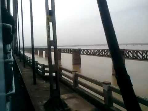 Rajahmundry for Where to buy fish mox locally