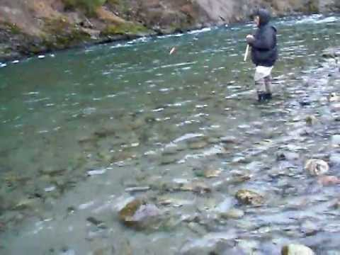 vedder river steelhead fishing feb/15/2012