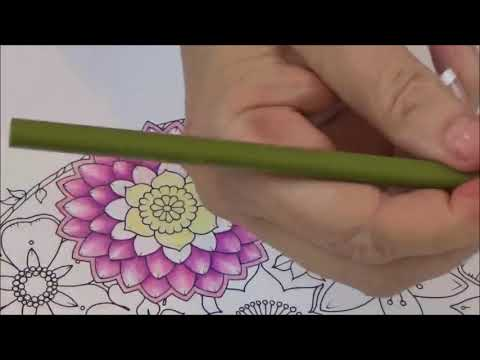 Thumbnail HOW TO COLOR FLOWERS AND BUTTERFLIES
