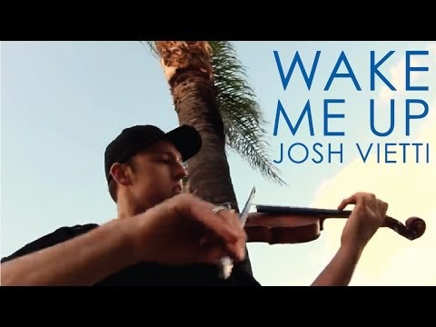 "Avicii - ""Wake Me Up"" - Music Video - Violin Cover"