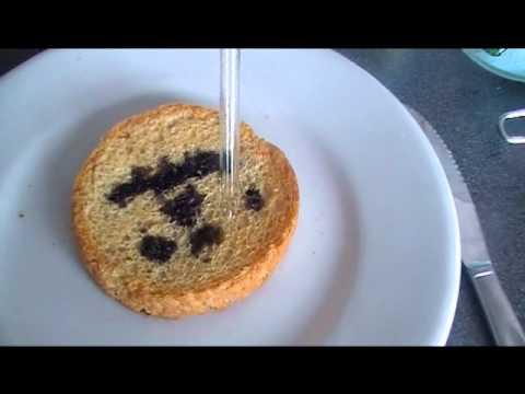 zetmeel in voedingsmiddelen