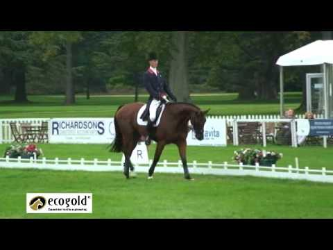 William Fox-Pitt and Cool Mountain – WEG British Eventing Team Dressage Session