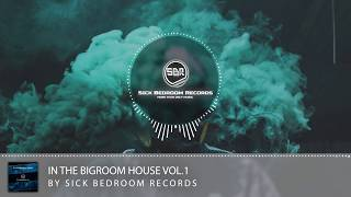 In The Bigroom House Vol.1 by Sick Bedroom Records