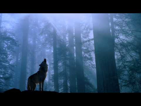 Beethoven - moonlight sonata (Rock Version)
