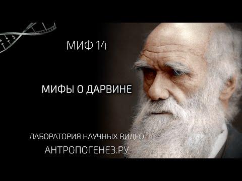 Мифы о Дарвине. Из серии Мифы об эволюции человека.