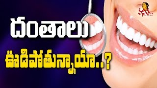 దంతాలు ఊడిపోతున్నాయా అయితే జాగ్రత్త    Simple Dental Tips    Beauty & Health Tips    Vanitha TV
