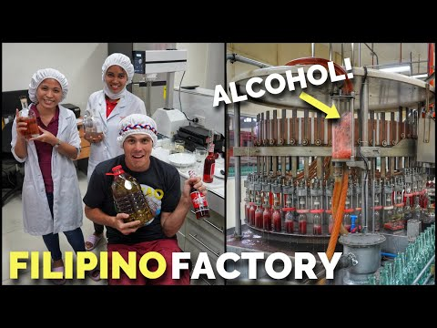 FILIPINO ALCOHOL FACTORY | How Drinks Are Made In The PHILIPPINES