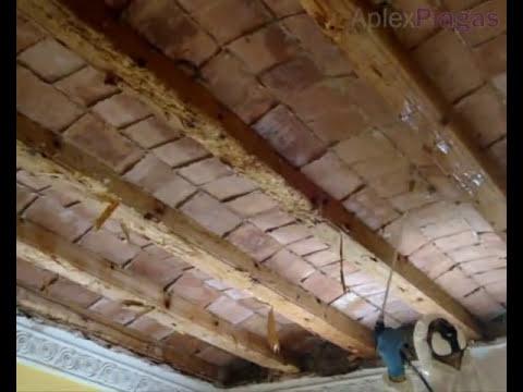 Tratamiento de madera y vigas atacadas por carcoma o termitas