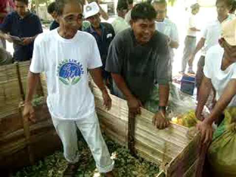 Pakusot Technology, Kulungan Baboy, Organic Piggery.MPG