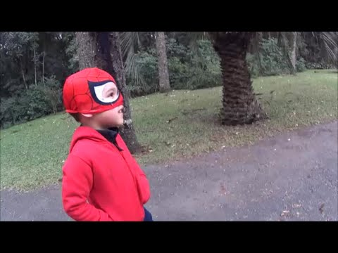 Homem Aranha no Zoológico
