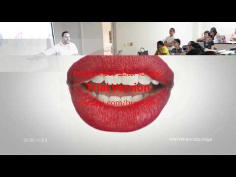 ALITRANIAO': Proceso de diseño