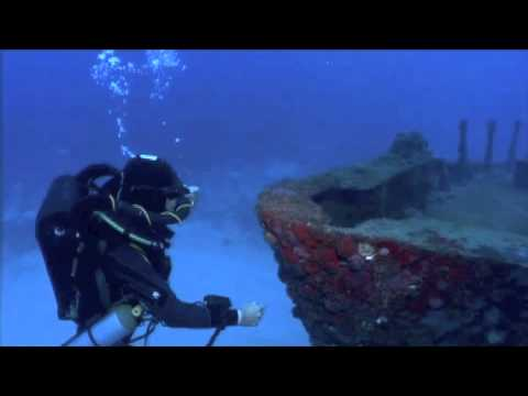 Rebreather Adventure: O2ptima Divers Study Black Grouper Aggregation in Bermuda