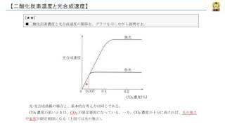 二酸化炭素濃度と光合成速度