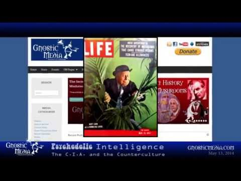 Gnostic Media Documentary | Psychedelic Intelligence: The CIA and the Counterculture