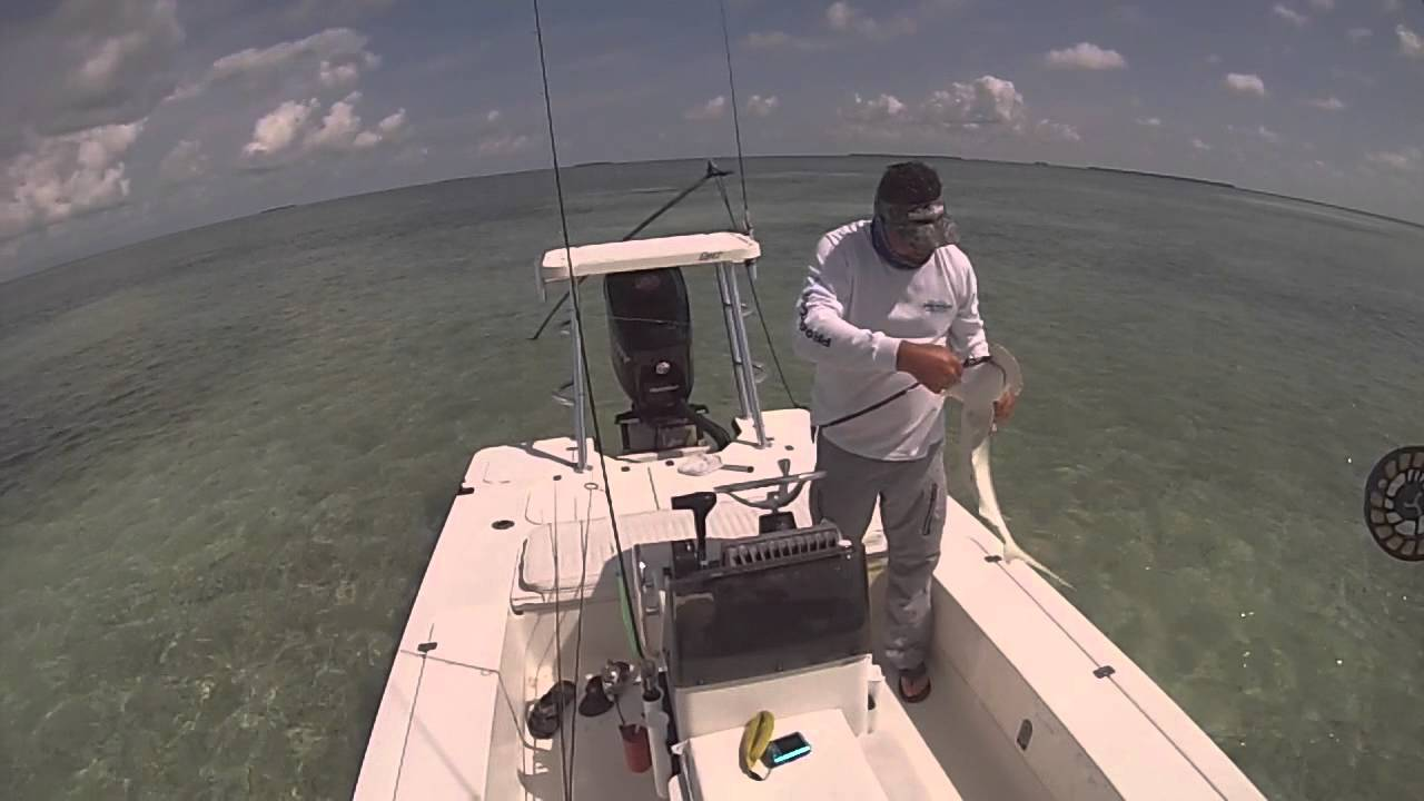 Key West Backcountry And Flats Fishing With Captain Dave