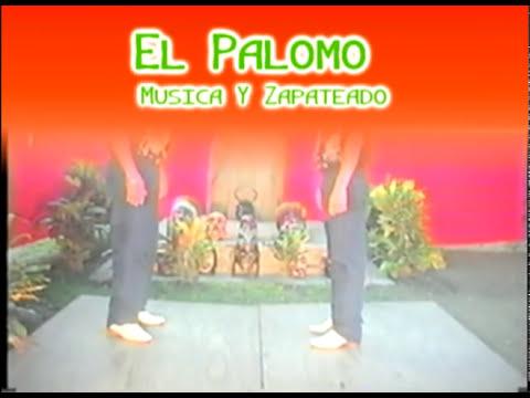 Aprende a Bailar Musica De Xantolo (El Higo Veracruz) sones tradicionales