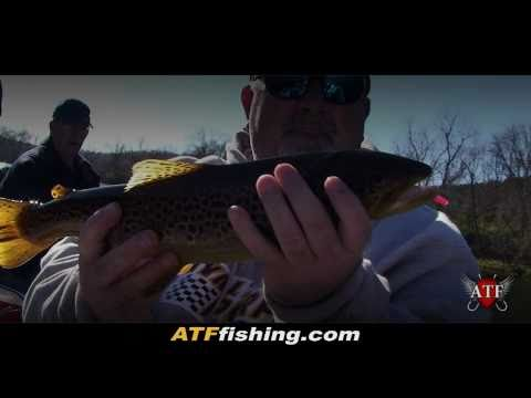 White River Trout Fishing in Flippin, AR