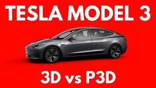 Which Tesla Model 3 Should You Get: Standard or Performance?