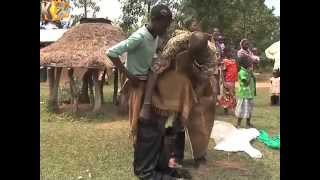 Bukusu Post-Circumcision Rites Continue 3 Months After 'Cut'