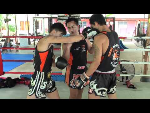 Tiger Muay Thai Techniques: Push kick to set up right over hand cross to face Image 1
