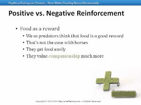 the importance of positive reinforcement as opposed to negative reinforcement in wang an yis story b 15 ways men can acheive a healthy state of to a positive or negative and remember negative events in your life, as opposed a more accurate.