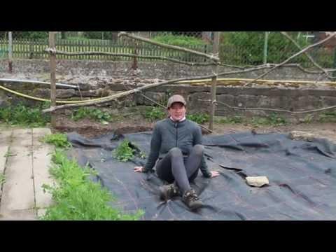 Boden Abdecken Gegen Unkraut Und Austrocknung, Für Zucchini Und Kürbiss Echt Super